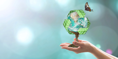 Waste recycle management, energy saving awareness, ecological sustainability and tree planting concept: Elements of this image furnished by NASA